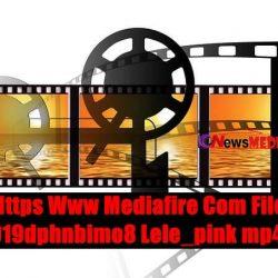 Link Https Www Mediafire Com File Glb919dphnbimo8 Lele_pink mp4 file